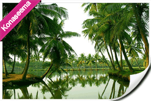 Punnami Tours Packages, konaseema andaalu, tour to konaseema, konaseema packages, konaseema kobbari trees